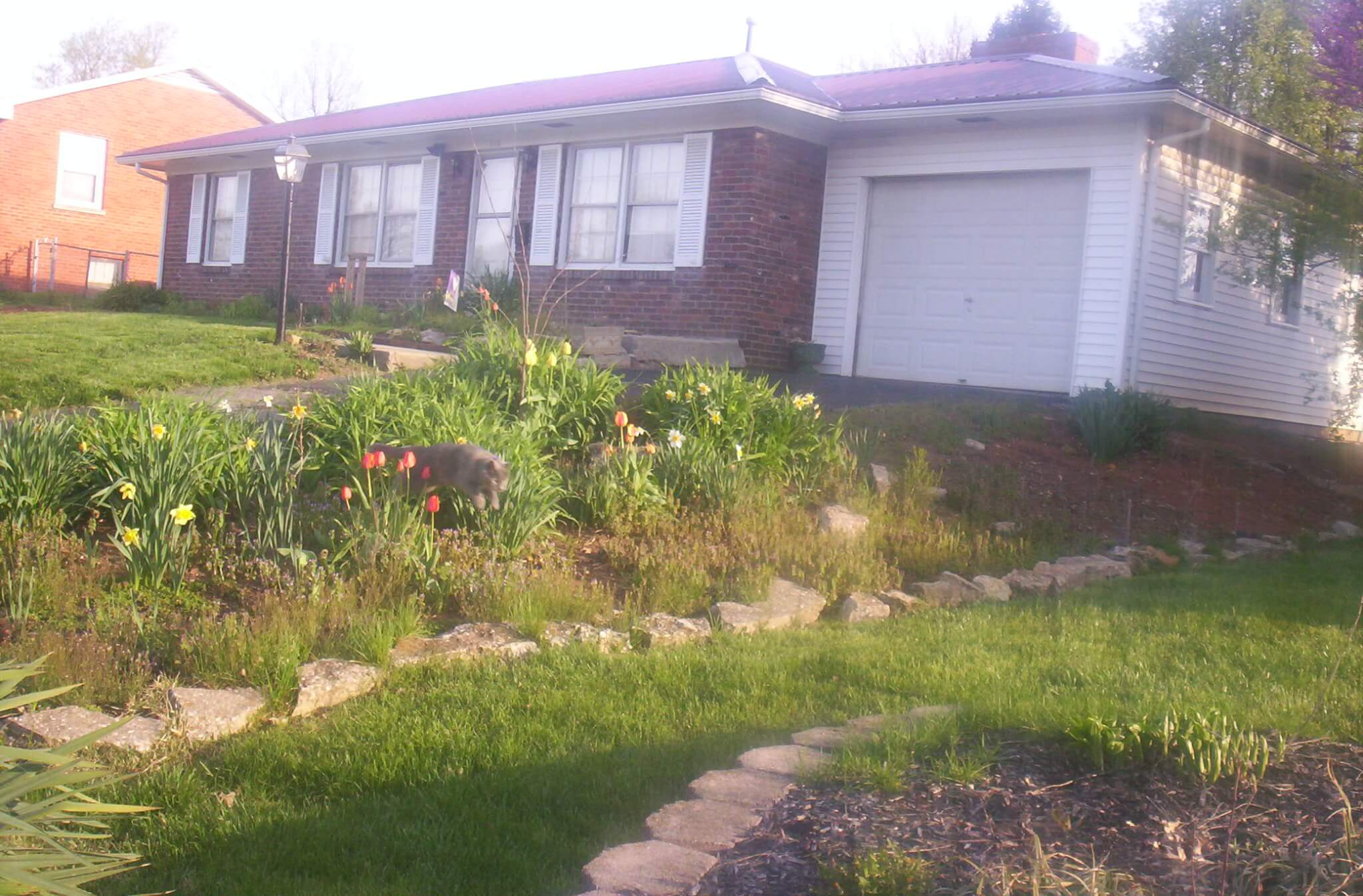 My house. Hattie, my cat, is jumping out of the flowerbed, by the way.