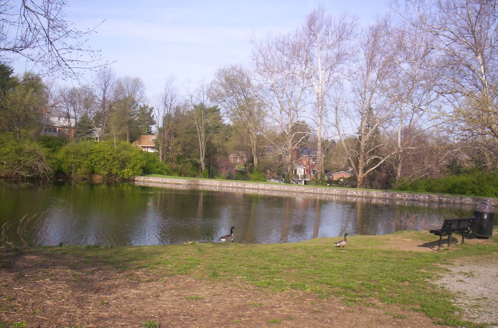 Duck pond is a pleasant place to go -- to feed the ducks, of course.