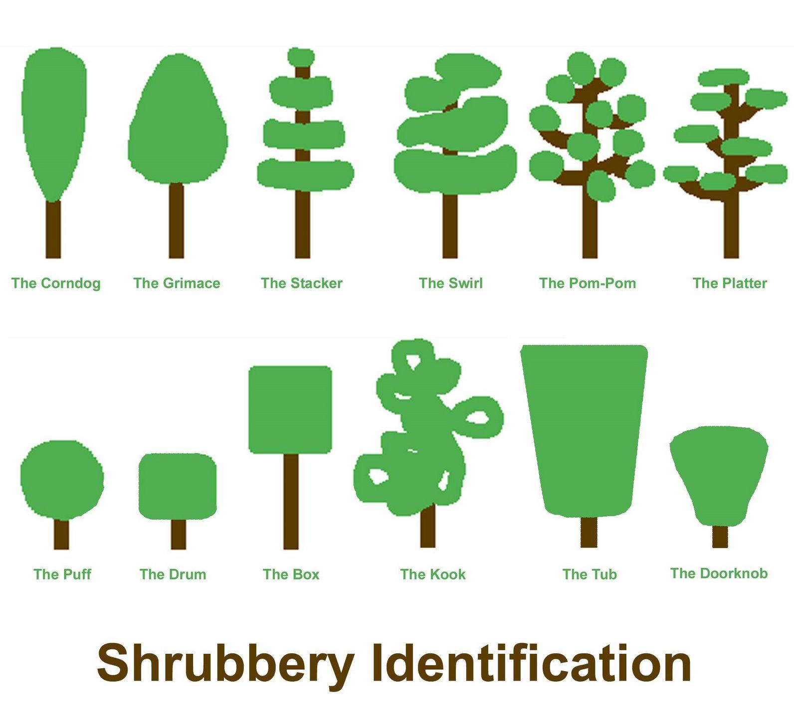 shrubberies