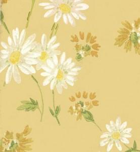 daisies-housevernacular