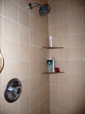cindys-updated-shower
