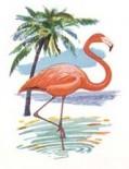 1954-aladdin-flamingo