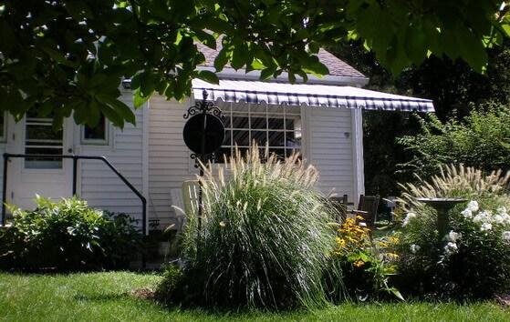 patio from under magnolia