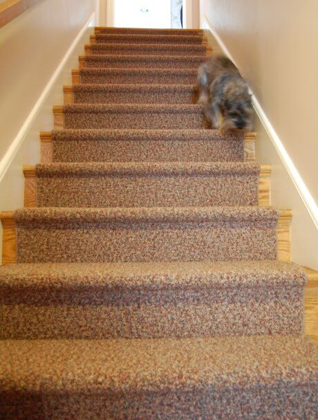 Carpet Runner For The Oak Stairs And Astro Retro