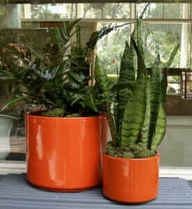 gainey ceramics cylinder planters