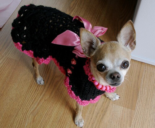 Crochet Xl Dog Sweater : The Best Sweaters and Coats to Crochet for your Dog - free patterns ...