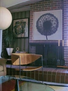 Tom Tru dandelion print