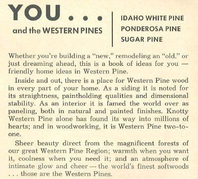 knotty pine history