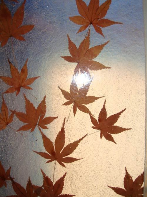close-up-leaves-in-lucite