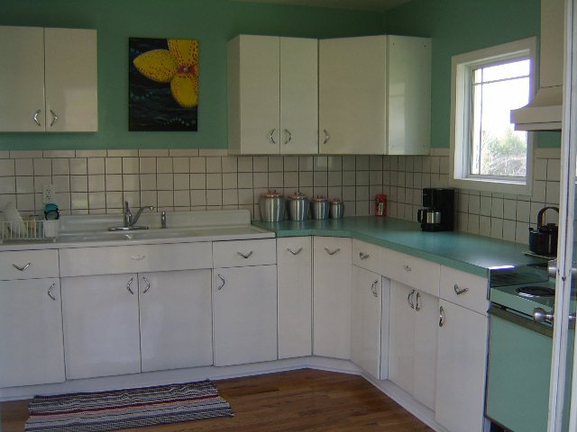 Bizarro Twin Pam And A Tale Of 6 Kitchens Retro Renovation