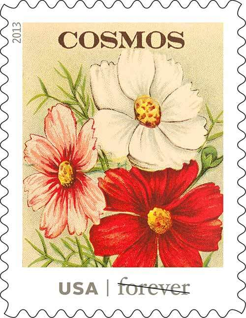 USPS-vintage-seed-packet-stamps-cosmos