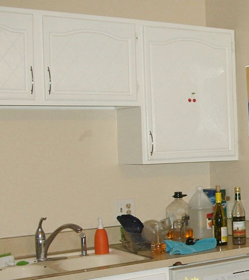 Vegebrarian's kitchen before. Please pardon the mess.