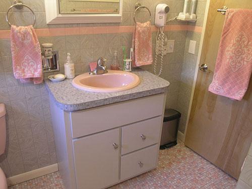Retro bathroom sinks