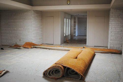 mid-century-living-room