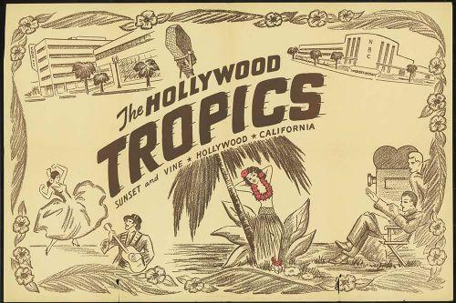 hollywood tropics