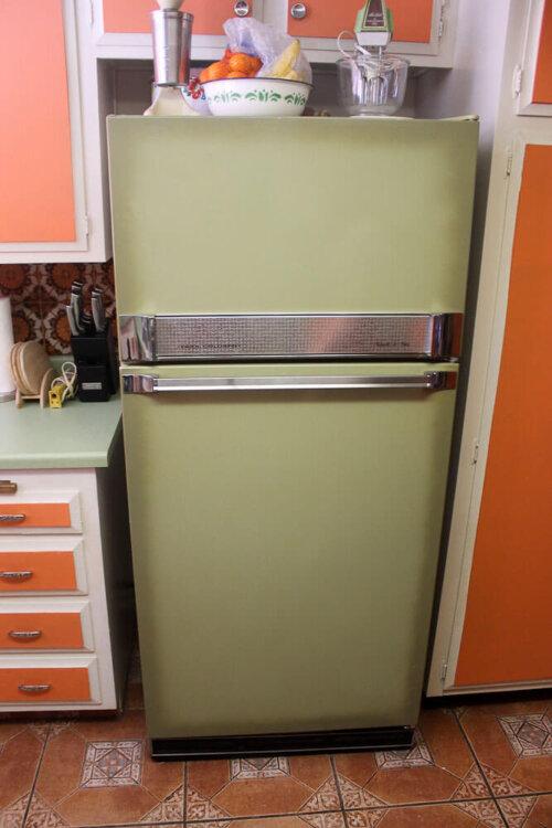 avocado-refrigerator
