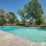 mid-century-pool