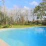 retro-ameoba-pool