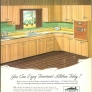 retro green and brown 50s kitchen