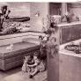 vintage-wood-mode-kitchen-cabinets-retro