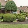 landscaping-retro