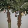 palms-decked-out-for-christmas-5fb58de7134750668cd98802a0b5b7971fe7cc3a