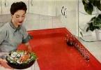 1954-micarta-countertop.jpg