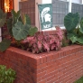 brick-planter