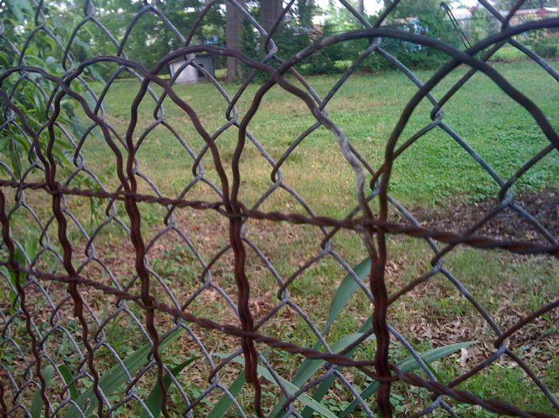 20 Images From Kristin S Midcentury Garden Retro Renovation