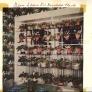 glass-shelves-for-plants