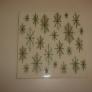 vintage-ceratile-wintergreen-tile