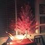 red-tree-facebc51766b5e35e7769d599df30fe105b3d172