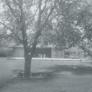 schwaller-house-dec-1964-745636f9974ca3ebe5919cb327a8e905f8e8a011