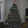 tree2-59dfa557728470c628e8c5405ebe4f6b7251b8a6