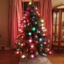 tree2013-dbe6b512d2f2e613701058f18938c3881fa30adc