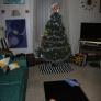 treemaybe-5ded9bde9681dd7150cfc23377ef7e9155b1ae70