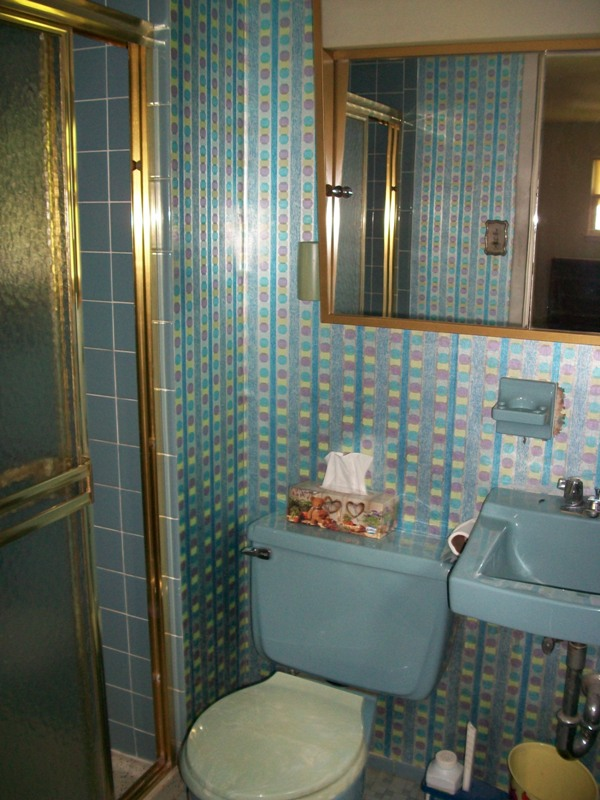 Everyone tells guy rosanna to update their 1960s time for 1960s bathroom design