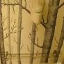 bath_trees-538c00e8f0df860f3b2c1e736e7ddd257e54184d
