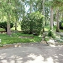 midcentury-landscaping