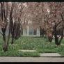 miller-house-gardens