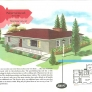1950s ranch house illustration color