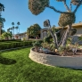 midcentury-landscaping-palm-springs
