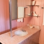 wilson-house-pink-bathroom-2
