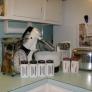 vintage-appliances-8df2a90c58c54f6200663002ceb7552143558074
