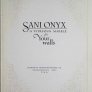 Sani Onyx A Vitreous Marble for Your Walls