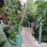 Mai-Kai-garden-path