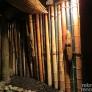bamboo-pathway