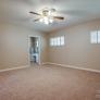 wall-to-wall-carpet