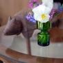 randsfjordglass-with-flowers-0dbc649f14dba180e5b70e5988a88fe1ee245206