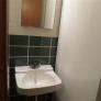 retro-basement-bathroom